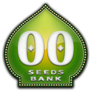 OO Seeds Bank - High Quality Feminized & Autoflowering Cannabis Seeds.