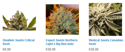 Best Cannabis Seeds For Sale 2013