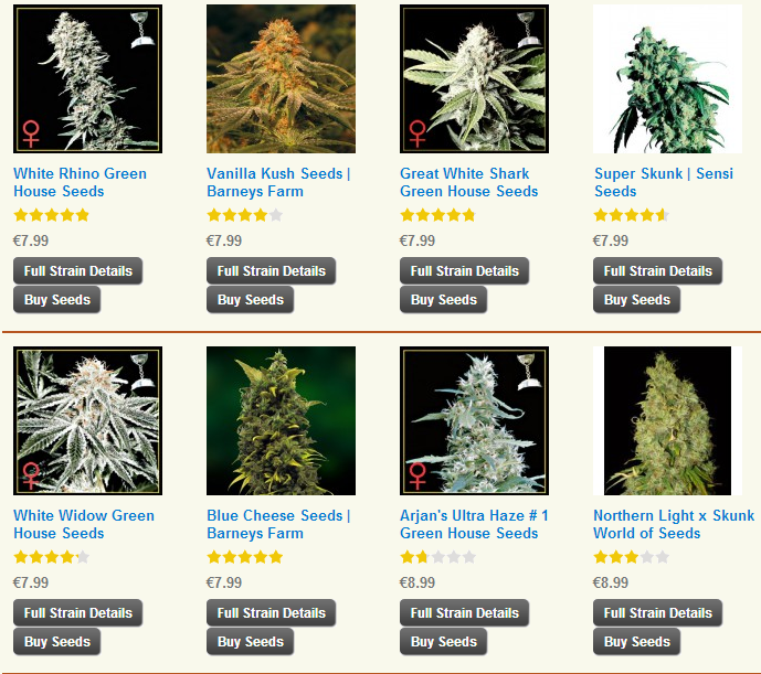 Buy Single Cannabis Seeds Online Here