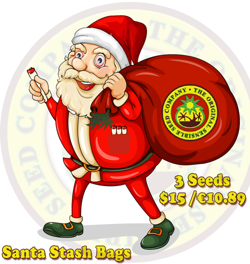 Cannabis Seeds USA Santa Stash Bags