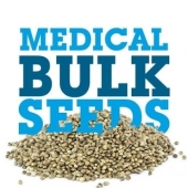 Usa Cannabis Seeds Buy Bulk Medical Seeds Online