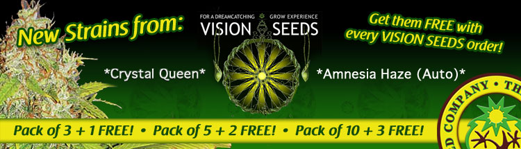 Free Cannabis Seeds From Vision Seeds