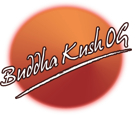 Buddha Kush OG Seeds Now In Stock - Best Online Prices!