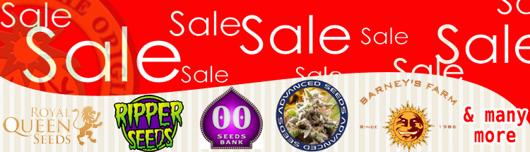 Cannabis Seeds Sale 2015