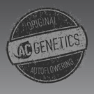 AC Genetics Seeds