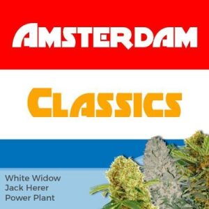 Amsterdam Seeds Classic Mix