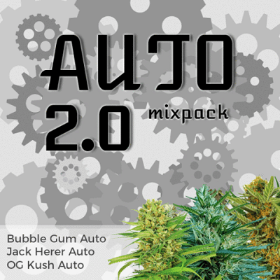 Auto 2.0 Mixpack Seeds