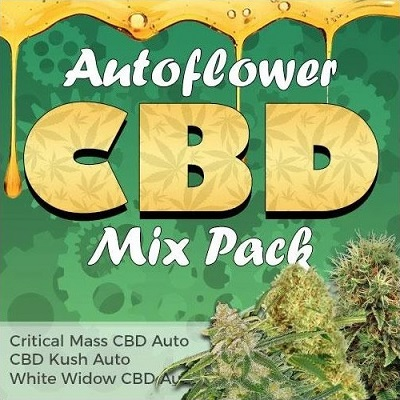 Autoflower Seeds CBD Mix
