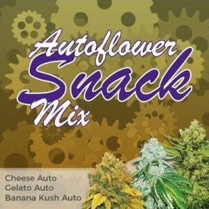 Autoflower Seeds Snack Mix