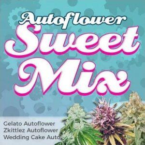 Autoflower Seeds Sweet Mix