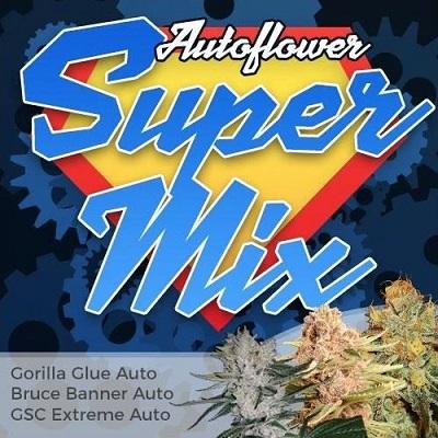 Super Autoflower Seeds