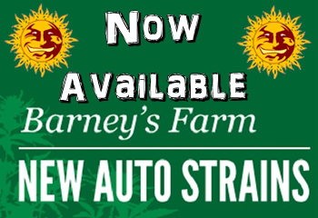 Barneys Farm Cannabis Seeds Now Shipping To USA