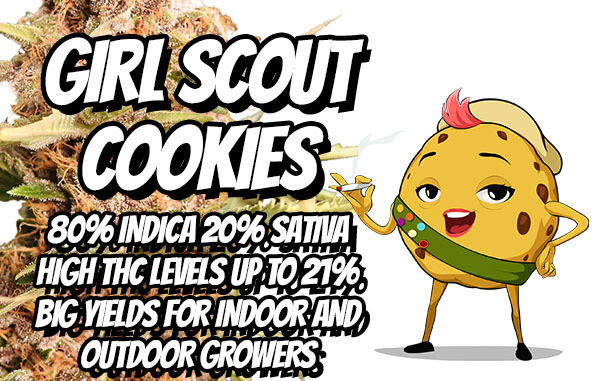 Best Girl Scout Cookies Seeds