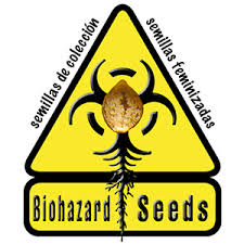 Bio Hazard Seeds -  Buy Single Seeds - Free Cannabis Seeds With Every Order!