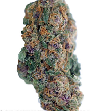 Blueberry Feminized Cannabis Seeds For Sale