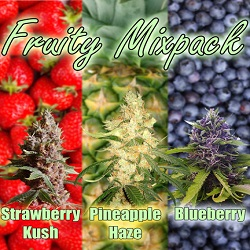 Buy Fruity Mix Cannabis Seeds $79.00