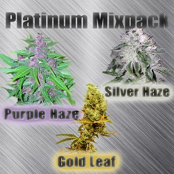 Buy Platinum Mix Cannabis Seeds $79.00