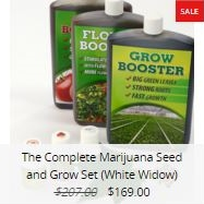 Cannabis Seeds USA Grow Kit