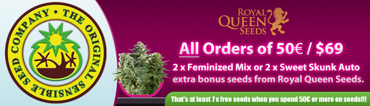 Cannabis Seeds USA - Royal Queen Seeds Promo Find Out More