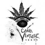 Cannventure Seeds