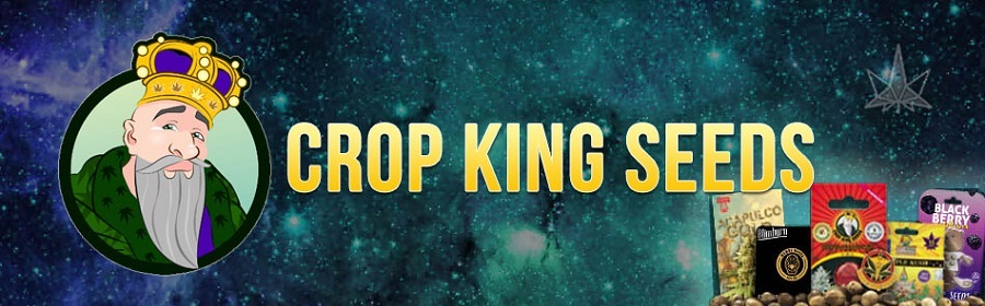 Crop King Feminized Cannabis Seeds For Sale