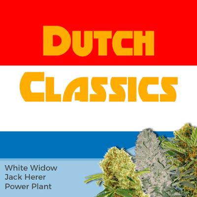 Dutch Classics Mixpack