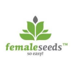 Female Seeds ranges are available in Feminized. Female Seeds are available in packs of 4, 5 & 10. All Female seeds come with our Price Guarantee.