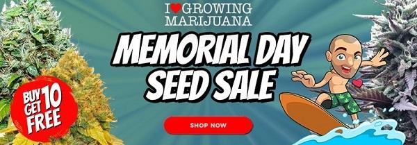 Free Cannabis Seeds Memorial Day Deals