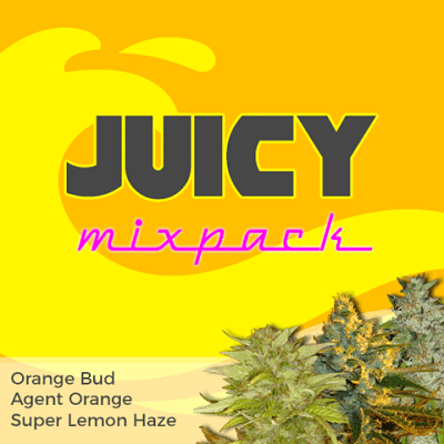 Juicy Mixpack