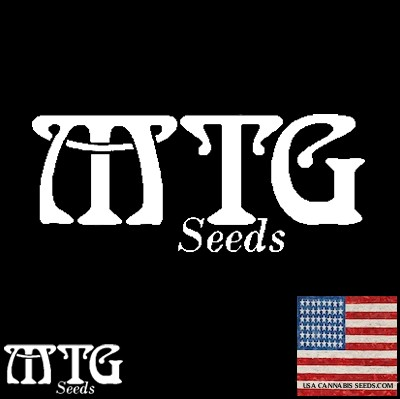 MTG Cannabis Seeds