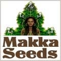 Makka Seeds was born as a company after more than 25 years of research and information gathering, begotten after a long collaboration and research of the concerns of a team of people of different nationalities, but with the same spirit. This is the case with Stitch, a friend and collaborator, developer and partner in creating automatic varieties and creator of new Super Autos varieties (Stitch is a recognized expert on creating automatic varieties and offers best original selections).
