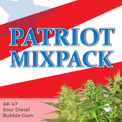 Patriot Seeds Mixed Marijuana Seeds