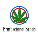 Professional Seeds offer a range of feminized cannabis seeds developed from the best techniques and intensive cultivation programs which produce powerful  feminized seed varieties with high production. Professional Seeds new varieties include, Double AK 47 and an Automatic strain of New York Diesel and are available  in packs of 3 and 10.