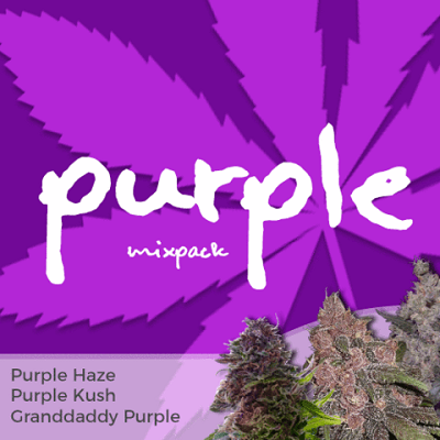 Purple Mixpack