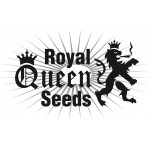 Royal Queen Seeds ranges are available in Feminized.& Autoflowering  Royal Queen Seeds are available in packs of 1, 3, 5 & 10. All Royal Queen Seeds come with our Price Guarantee.
