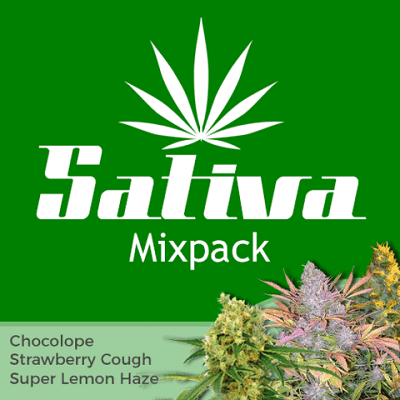 Sativa Mixpack
