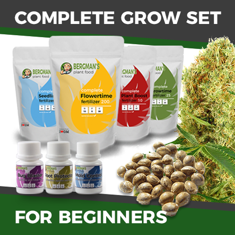 The Complete Beginners Cannabis Seeds Grow Set