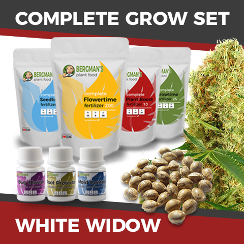 The Complete White Widow Cannabis Seeds Grow Set