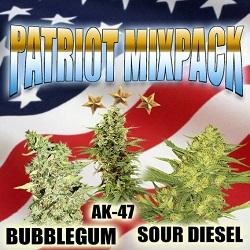 US Cannabis Seeds - Patriot Mix Pack
