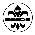 VIP Seeds Now In Stock - Free Cannabis Seeds
