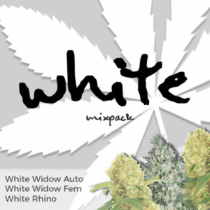 White Mixpack Cannabis Seeds