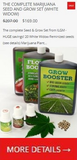 White Widow Grow Kit - Special Offer!