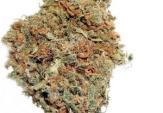 White Widow Feminized Cannabis Seeds For Sale