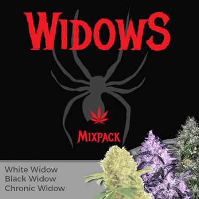 Widow Mixpack Cannabis Seeds