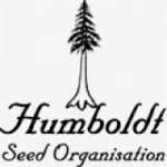 Humboldt is the epicenter of the marijuana industry in Northern California, which is the most reknown marijuana production area in the United States.