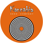 This is the whole cannabis seed range from Kannabia Seeds. Kannabia Seed ranges are available in, Feminized & Autoflowering.Kannabia Seeds are available feminized in packs of 1,5, & 10 and mixed packs of 6 & 9 All Kannabia seeds come with our Price Guarantee.